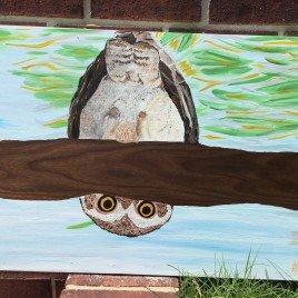 Blyther Owl