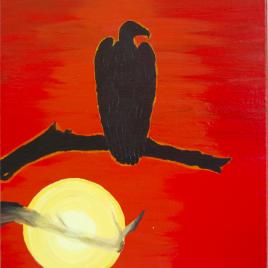 Condor Perch