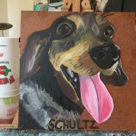 Sg Schultz