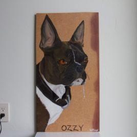 Ozzy – 2.25.17