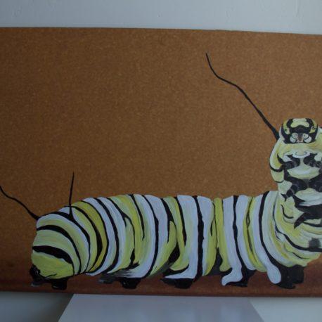 monarchcaterpillar1