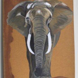 Elephant 2 – April 8th 2017