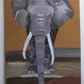Elephant 3 – March 13 2017