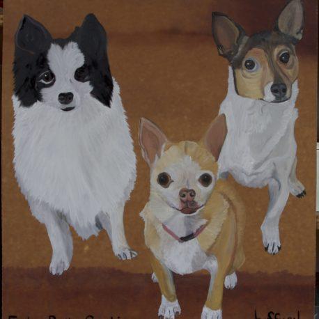 Furby,Bella,Sishi